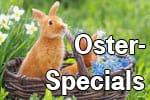 congstar Oster-Special - Top Smartphones günstiger mit Allnet Flat