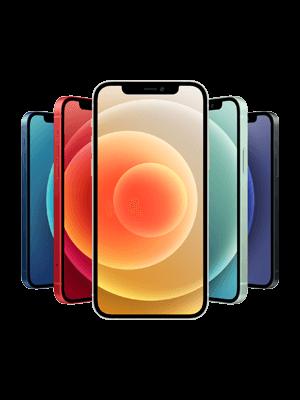 congstar - Apple iPhone 12 - alle Farben (Ansicht vorn)