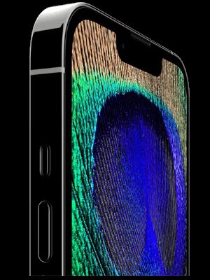 congstar - Apple iPhone 13 Pro - 120Hz Display